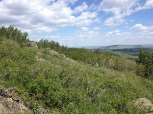 подъем на гору Кленовая