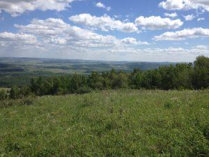 первая поляна. гора Кленовая