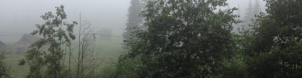 поселок Бриш в тумане