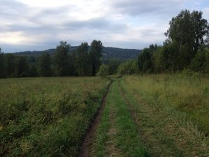 дорога на Бедярыш